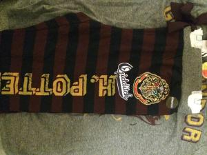 Harry Potter Quidditch pyjamas primark